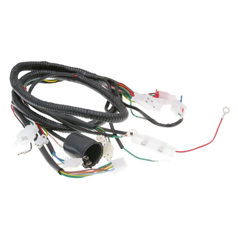 wiring harness for peugeot v clic en different chinese scooter 4stroke motorkit. Black Bedroom Furniture Sets. Home Design Ideas